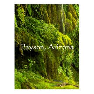 Waterfall in green in Payson,Arizona, Postcard
