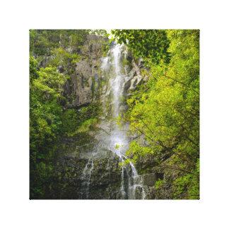 Waterfall in Maui Hawaii Canvas Print