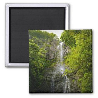 Waterfall in Maui Hawaii Magnet