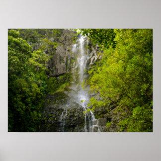 Waterfall in Maui Hawaii Poster