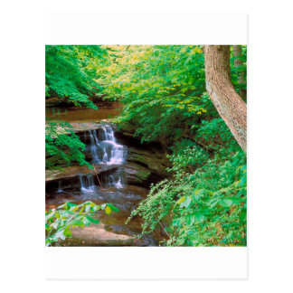 Waterfall In Starved Rock State Park Illinois Postcard