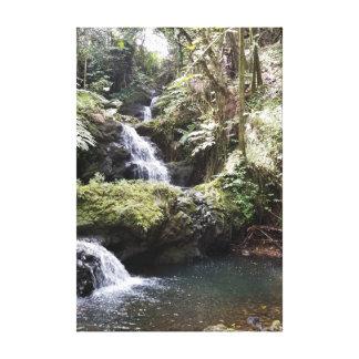 Waterfall in the Hawaiian Botanical Gardens Canvas Print