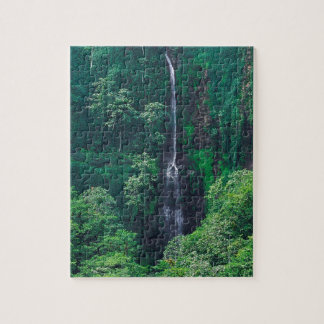 Waterfall Lush Costa Rican Jigsaw Puzzle