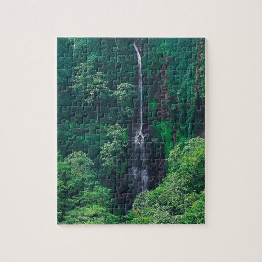 Waterfall Lush Costa Rican Jigsaw Puzzle