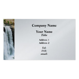 Waterfall Paterson NJ - Platinum Pack Of Standard Business Cards