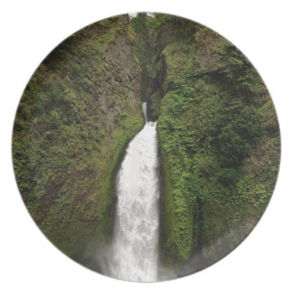 Waterfall Plate
