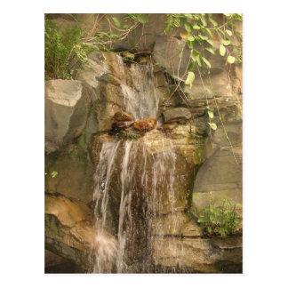 Waterfall Postcard! Postcard