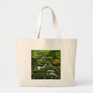Waterfall Roaring Fork Smoky Mountian Canvas Bags
