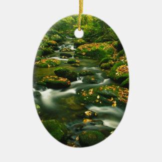 Waterfall Roaring Fork Smoky Mountian Christmas Tree Ornaments