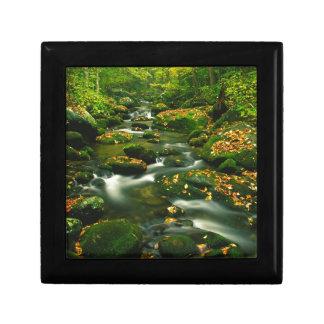 Waterfall Roaring Fork Smoky Mountian Gift Boxes