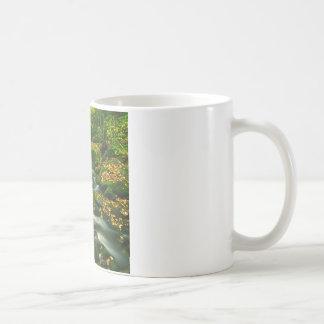 Waterfall Roaring Fork Smoky Mountian Coffee Mugs