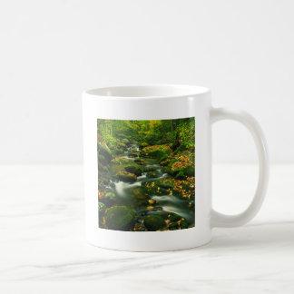 Waterfall Roaring Fork Smoky Mountian Mugs