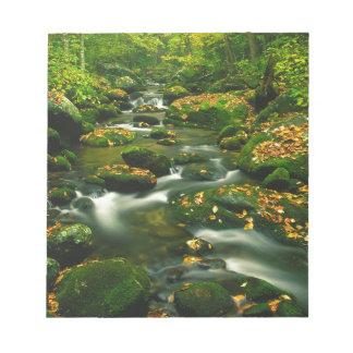 Waterfall Roaring Fork Smoky Mountian Memo Notepads