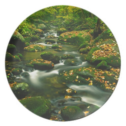 Waterfall Roaring Fork Smoky Mountian Party Plate