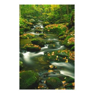 Waterfall Roaring Fork Smoky Mountian Custom Stationery