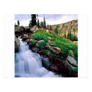 Waterfall Rushing Of Spring Teton Park Wyoming Postcard