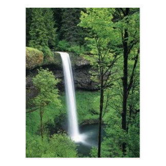 Waterfall surrounded by lush greens postcard