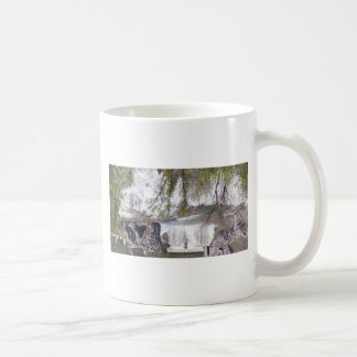 Waterfall with Branches Basic White Mug