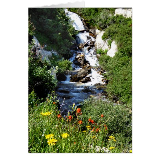 Waterfall with Wildflowers, NV Blank Greeting Card