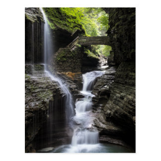 Waterfalls at Watkins Glen, NY Postcard