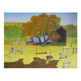 Waterford Barn & Sheep Postcard