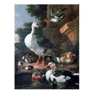 Waterfowl in a classical landscape, 17th century postcard