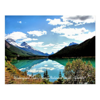 Waterfowl Lake Banff National Park Postcard