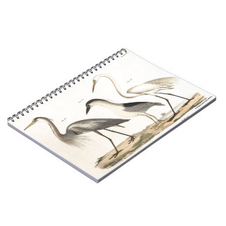 Waterfowl Notebooks
