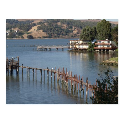 Waterfront Living Post Card