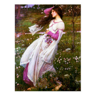 Waterhouse Windflowers Postcard