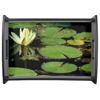 Waterlily Flower Water Garden Pond Serving Tray