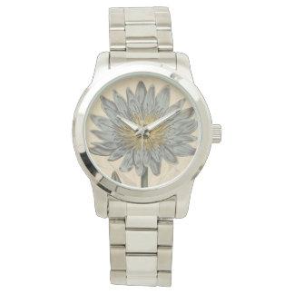 Waterlily Watch