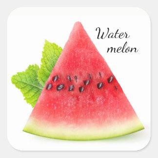 Watermelon and mint square sticker