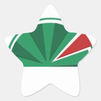 watermelon design star sticker