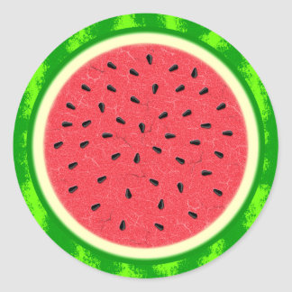Watermelon Slice Summer Fruit with Rind Classic Round Sticker