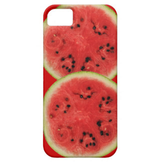watermelon time iPhone 5 case