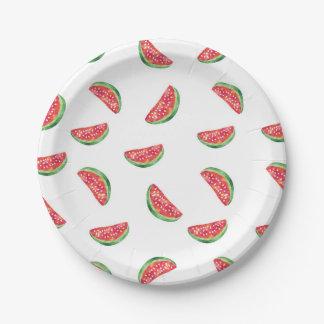 Watermelon watercolour party plate