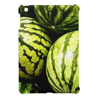 Watermelons iPad Mini Covers