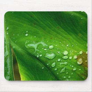 Waterproof Mousepad