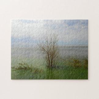 Waterscape Puzzle