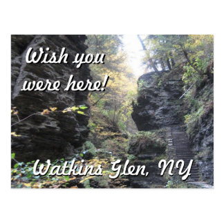 Watkins Glen, N.Y. Postcard