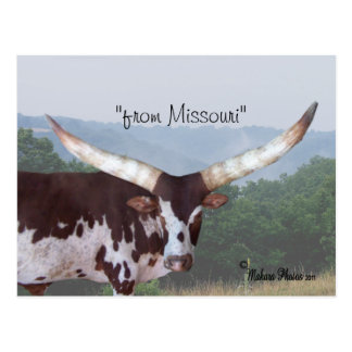 Watsui steer #1 postcard- customize postcard