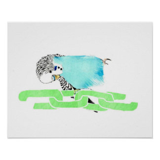 Wave budgerigar posters