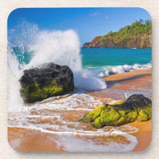 Waves crash on the beach, Hawaii Coaster