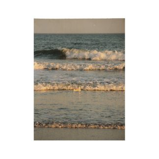 Waves & Gull Wood Poster
