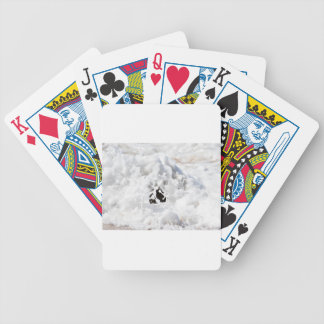 WAVES QUEENSLAND AUSTRALIA BICYCLE PLAYING CARDS