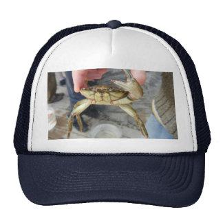 Waving Crab Trucker Hat