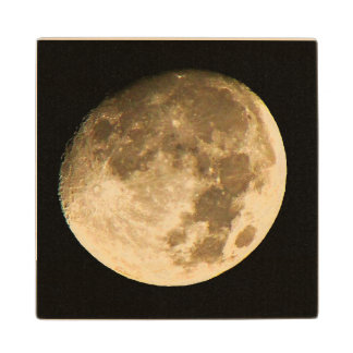 We Are All Under the Same Moon Wood Coaster