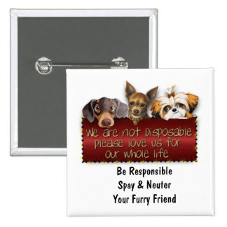 We Are Not Disposable Please Spay & Neuter 15 Cm Square Badge