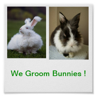 We Groom Bunnies Sign Poster